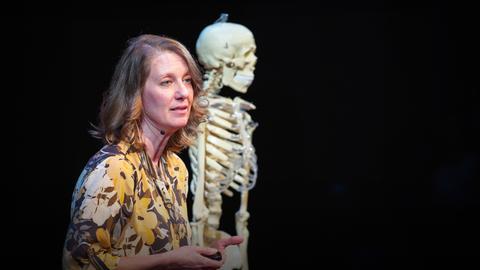 The hidden history found in your teeth | Carolyn Freiwald